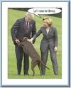 Clintondog